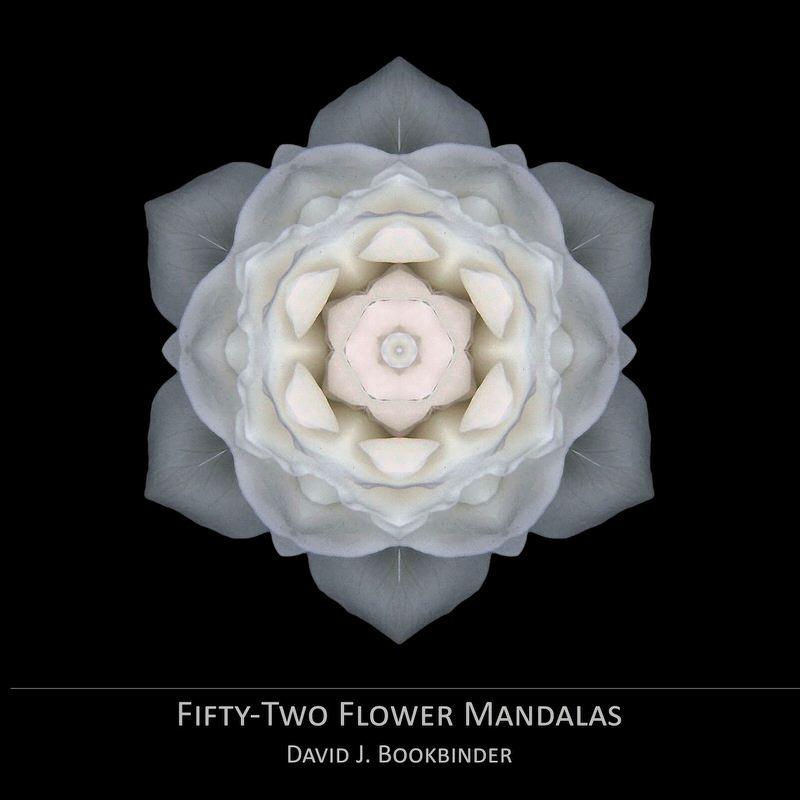 The inspiration behind david bookbinders flower mandalas thirdeyemom mightylinksfo