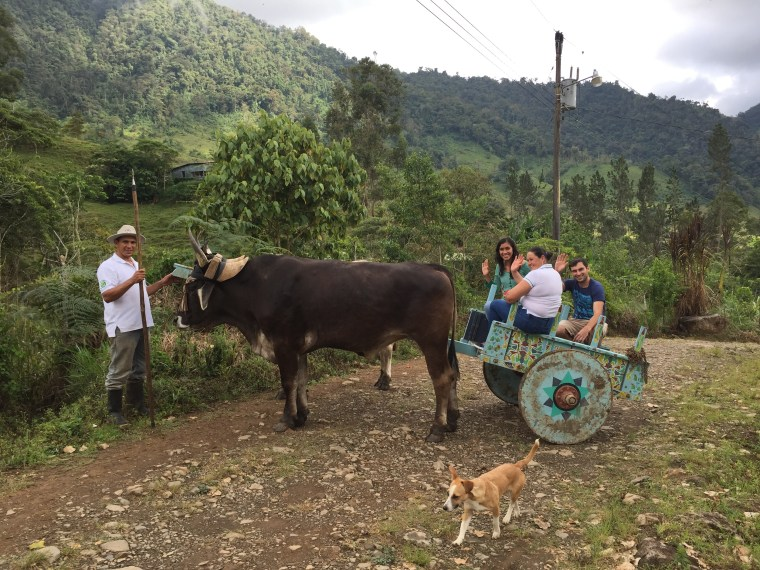Lokal Co-Founder Dave Koken embarking on a traditional 'ox cart' ride through the community of Cedral in the highlands of Southern Costa Rica. Cedral offers hiking, visits to an indigenous cemetery, waterfalls, tours of their coffee plantation and coffee roasting factory, and overnight accommodations in a guesthouse.