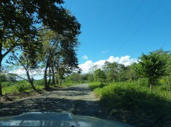 Bumpy, unpaved roads are the most common in the Osa Peninsula and require a 4WD vehicle and patience.