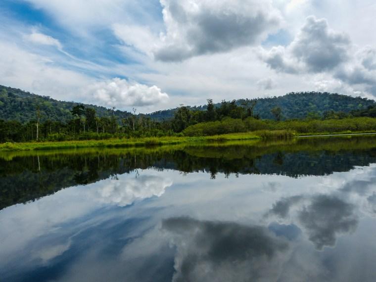 Laguna Chocuaco, Rancho Quemado, Osa Península, Costa Rica