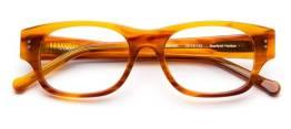 colors-in-optics-c1021-50-tortoise-top-angle