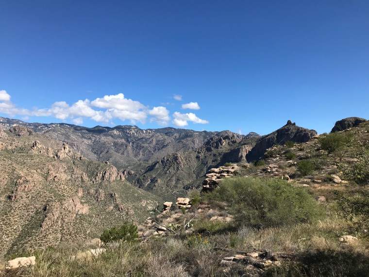 Blackett's Ridge Trail, Sabino Canyon, Tucson, AZ
