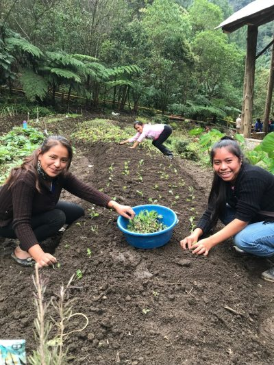 Weeding and planting with friends. Photo credit: Tricia Hall