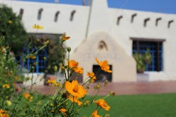The gorgeous grounds at Hacienda del Sol. Photo Credit: Tom Firth
