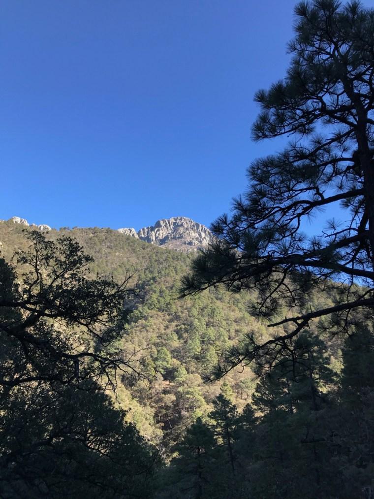 Views along the way go Old Baldy Trailhead, Mount Wrightson, Tucson, Arizona 2