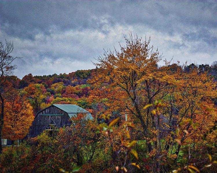 hannahbosma autumn