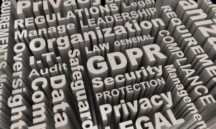Dynamic GDPR infographic | GDPR Risk Assessment | key terms