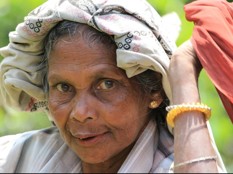 Human Rights Impact Assessment of the Tea Sector