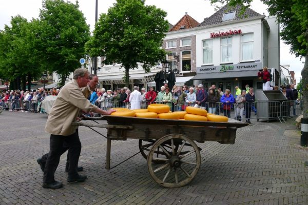 Alkmaar cheese being moved