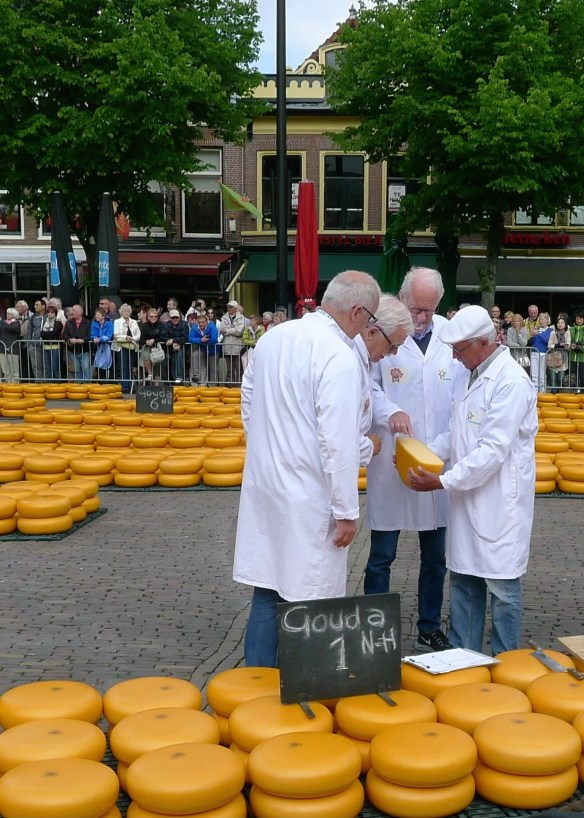 cheese market judging
