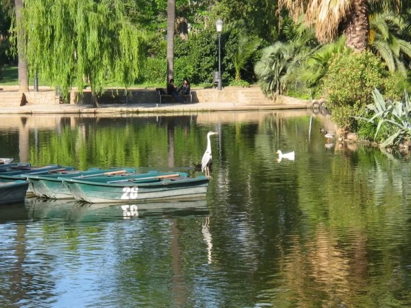 boat rental at Ciutadella Park