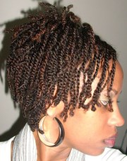 natural two strand twists black