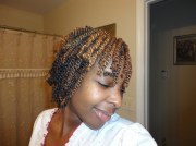 akiyia's two toned strand twists