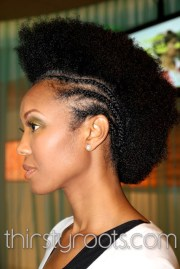 afro braided mohawk hairstyle