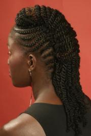 braids and twists hairstyle