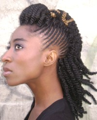 Twists braids hairstyle