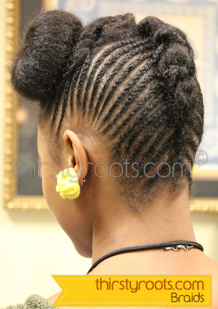 Braided Hairstyles Black Hair
