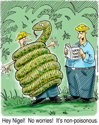 Non-Poisnonous Snake Gifts
