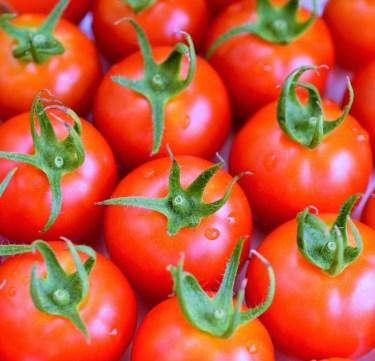 ミニトマトを冷凍して弁当に入れるのはアリ。メリットとは