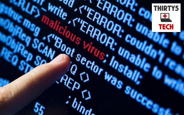 Computer Virus Goner
