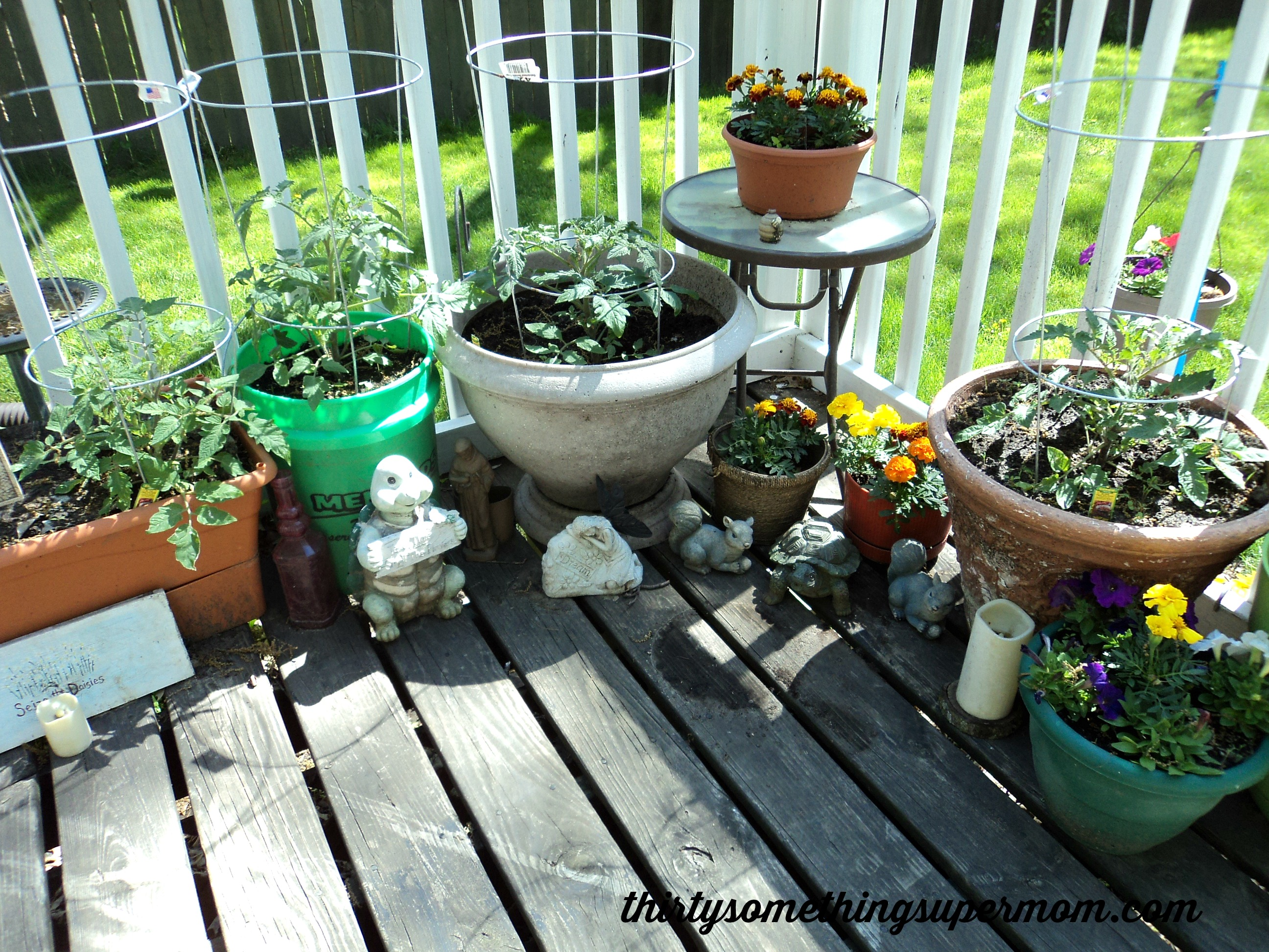 Create an Outdoor Oasis on a Budget - ThirtySomethingSuperMom
