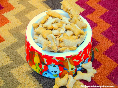 Easy Homemade Dog Treats- Chicken Treat