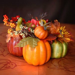 10 Fall Decor Items for less than $20