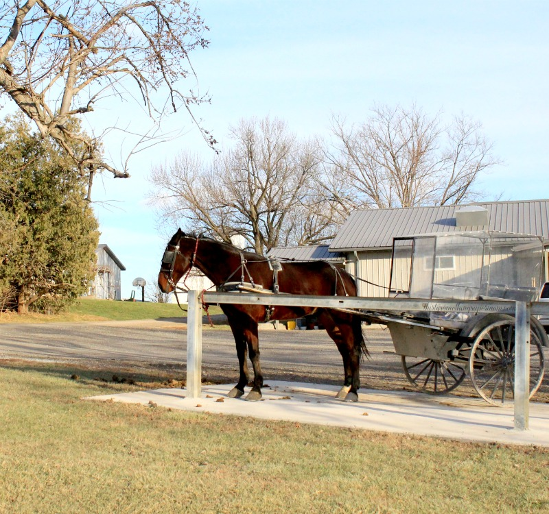 Travel to an Amish Paradise in Kalona Iowa