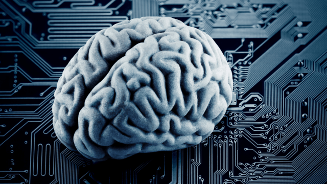 Your brain is an amazing computer.