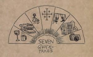 Seven Quick Takes logo