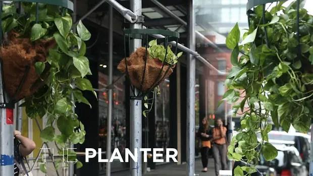 Softwalks_planter