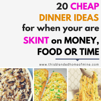 20 Cheap Dinner Ideas for When You Are Low On Cash Or Food