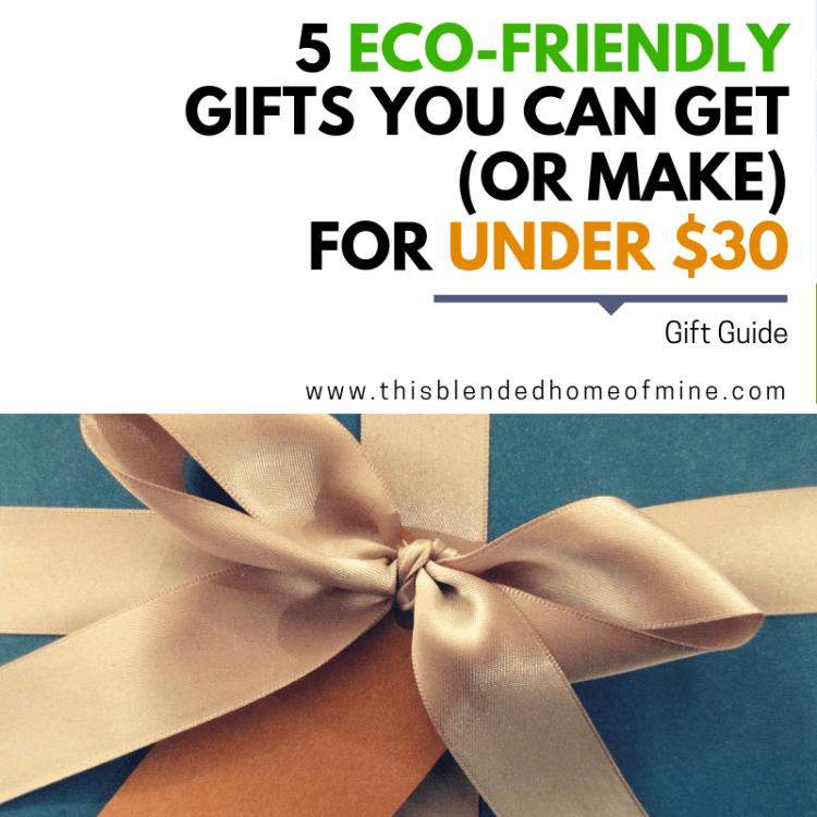 5 Eco-Friendly Gifts You Can Get or Make for Under $30 - This Blended Home of Mine - Eco, environment friendly