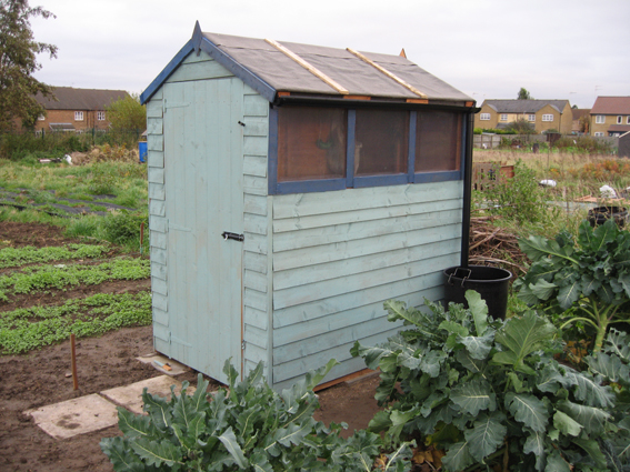 shed_1711