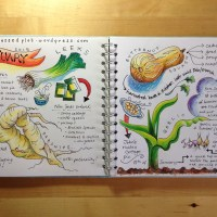 Allotment journal