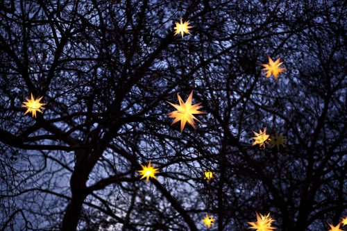Beautiful light drives are a fun Christmas activity for all ages