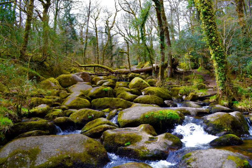 becky falls Dartmoor Devon UK: family-friendly things do near Kingswear
