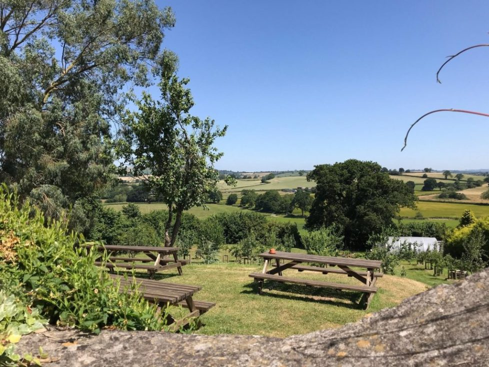 Pony and trap chew magna - pubs with outdoor play areas bristol