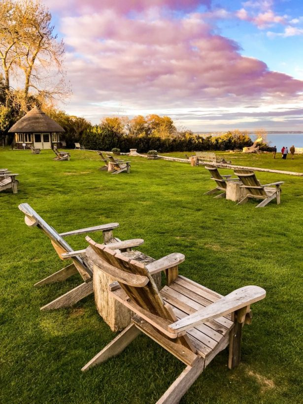 restaurants in Poole: The pig on the beach_chairs looking out to sea views_studland
