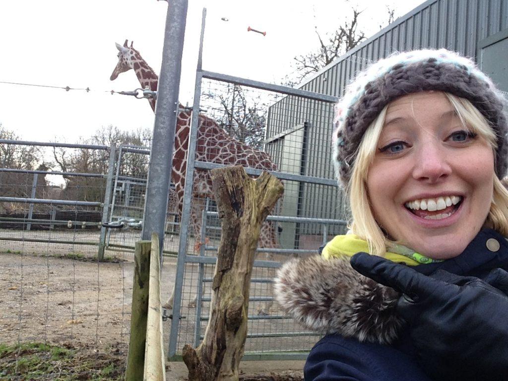 Noah's Ark Zoo Farm_just off the motorway