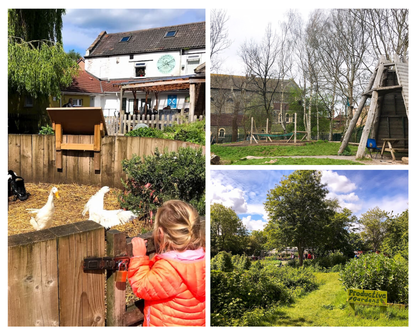 Windmill Hill City Farm, Bristol