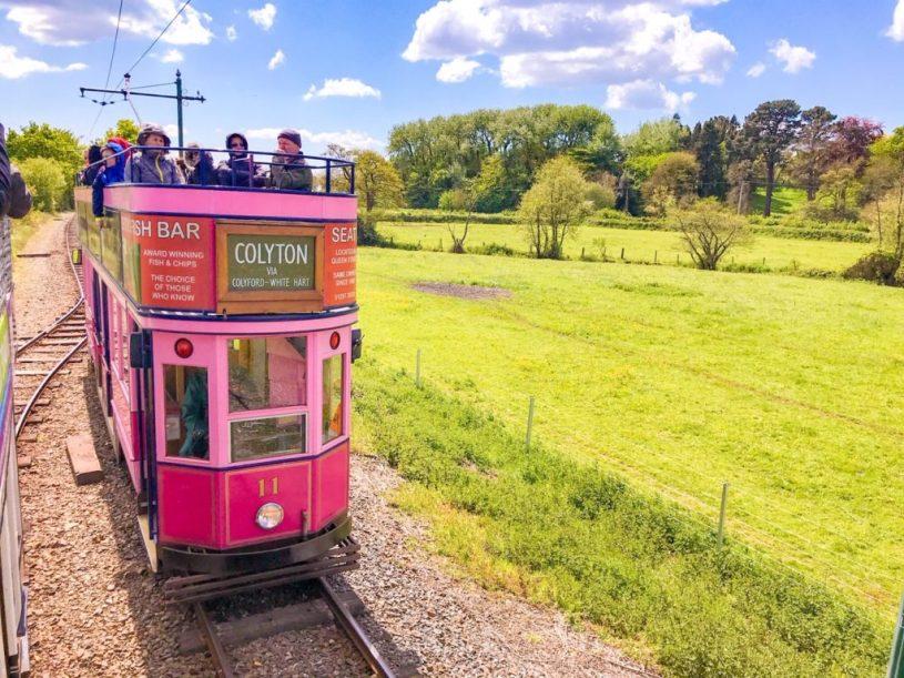 seaton tramway, pink tram