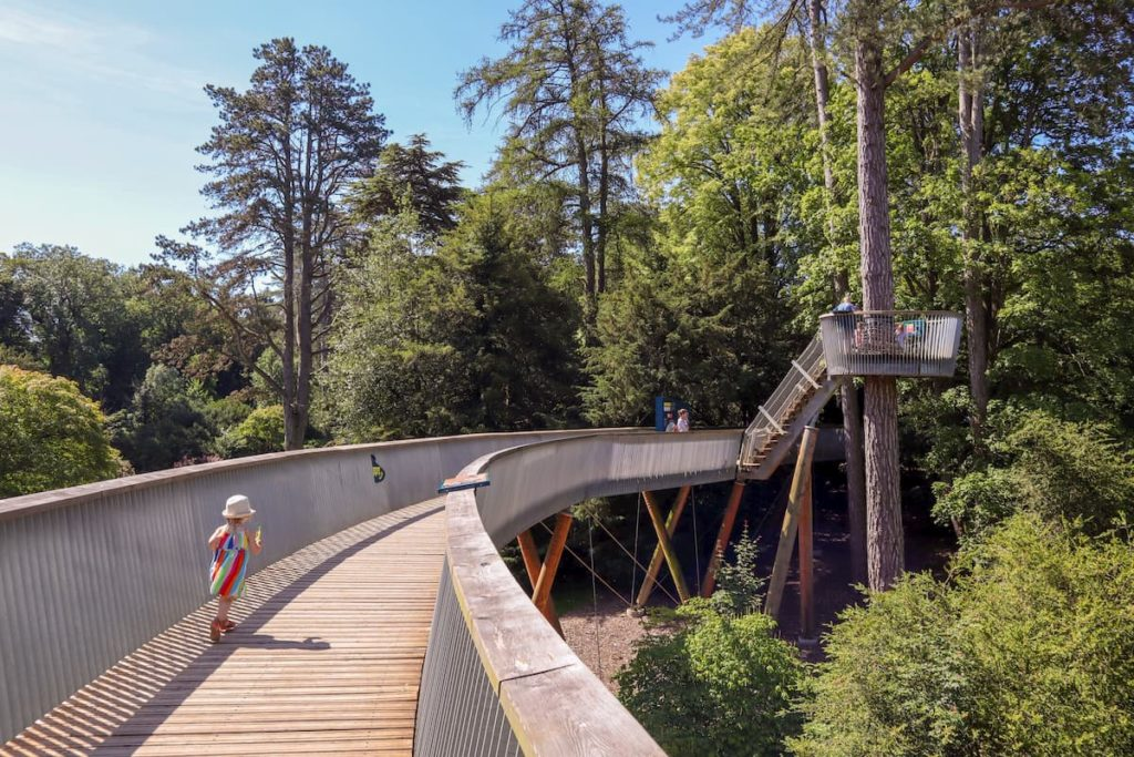 Tree top walkway Westonbirt Arboretum with kids
