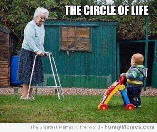 cool-memes-cirle-of-life