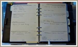 1 My Diary