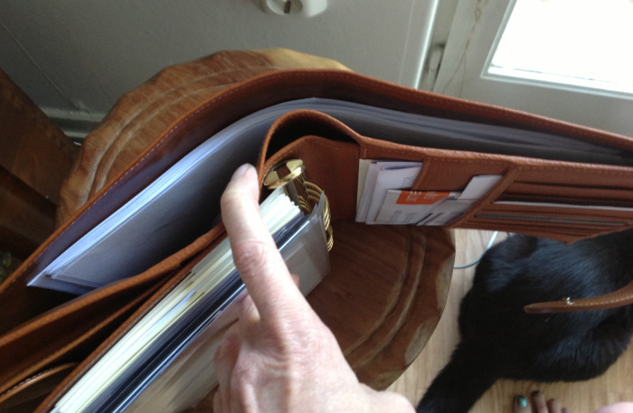 I like the full length back pocket in my A5 Mia Cara as they hold papers for photocopying