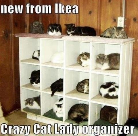455_new-from-ikea-crazy-cat-lady-organizer_480-473