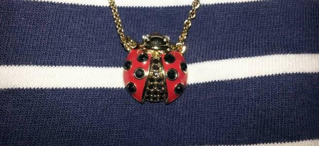 ladybug-closey