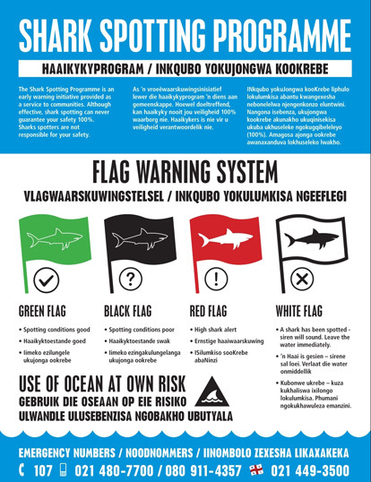 flags_only