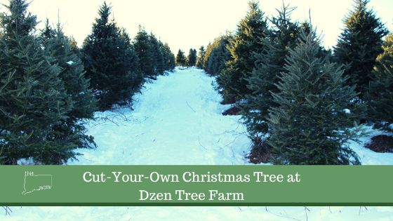 Cut-Your-Own Christmas Tree at Dzen Tree Farm